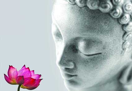 meditationhead